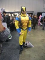 Armageddon Expo 2012 - Wolverine by fulldancer-alchemist
