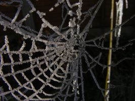 Frosted Web3 by Tasastock