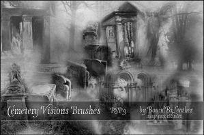 Cemetery Visions PSP9 Brushes by Bound-By-Leather
