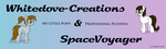 Bronycon Banner by WhiteDove-Creations