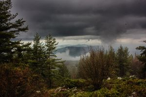 Before a Storm by latunov