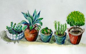 Pots in a row by neveka