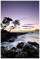 Last Maui Light by Raymaker