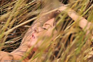 Splendor in the Grass II by x-muse