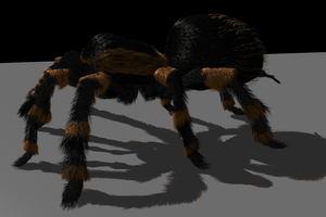 Tarantula Model 2 by ChozoBoy
