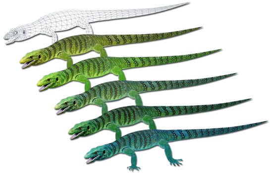 ZT2: Emerald Tree Monitor and Variants by GrandeChartreuse