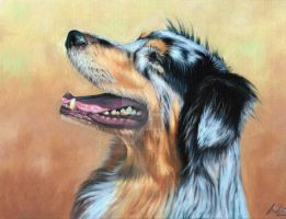 Australian Shepherd Dog by ArtsandDogs