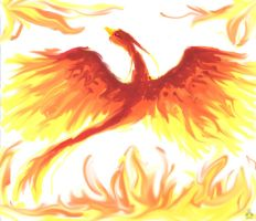 Bird of Fire by sugar-cat-candy