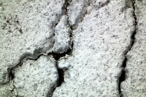 Roadpaint Cracks Texture 03 by Limited-Vision-Stock