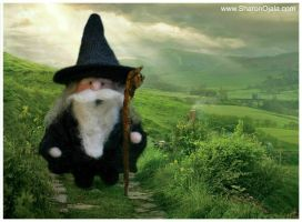 Gnomey As Gandalf by sojala