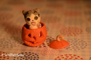Polymer Clay: Chi in a pumpkin [Chi's Sweet Home] by WolfieInLove