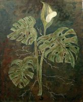 'Split leaf  Philodendron ' by ptuny