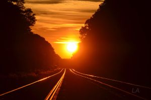 Sunset Rail by CSX5344