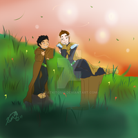 Klaine-The Hobbit and the Elf by katkitoshi