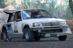 peugeot 205 rally by fer200015