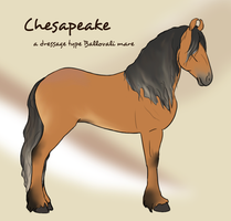 Chesapeake by SkyArrow