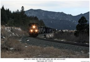 MRL 4311 and 9 more by hunter1828