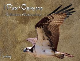 Cutout PNG - Osprey 7 by justiej
