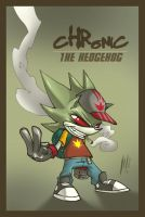 Chronic the Hedgehog by Santolouco