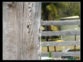 Wooden Fence by nitrolx