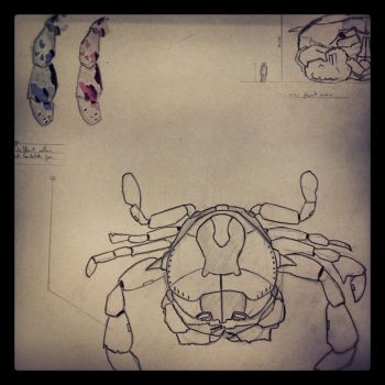 Giant Crab - WiP by suibne