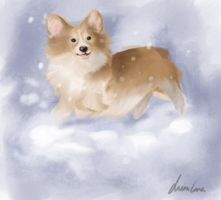 Corgi In the Snow by Luisabel123
