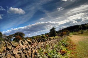 Bradgate Park Autumn HDR by nat1874