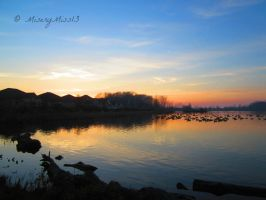 Sunset on the Lake by Michies-Photographyy