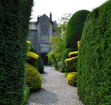 Levens Hall 181 by Forestina-Fotos