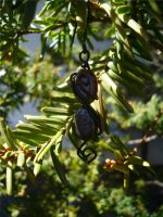 Sunlight and Shadow by Starlit-Sorceress