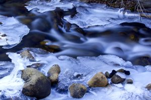 Galena Creek, Nevada by sellsworth