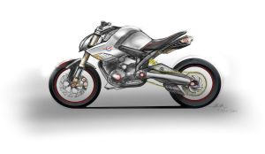 Naked Street Fighter by turbocharger