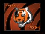 Cincinnati Bengals wallpaper by celticpath