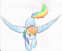 Rainbow Dash by MartinHello