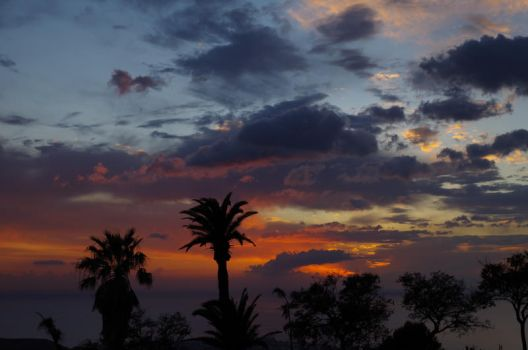 I just love palmtrees and sunsets. by sp1987