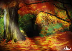 Forest in autumn by EmeSso