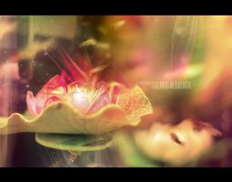 Flower of heaven .EFX Version. by enemia