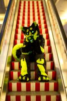 Look there is a Husky on the escalator! by Chibi-Alu