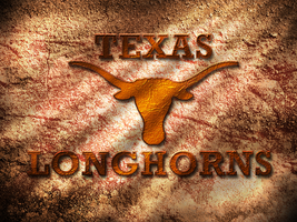 Texas Longhorns by TWRaBiDMoNkEy