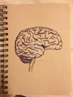 Brain by cleverquandary