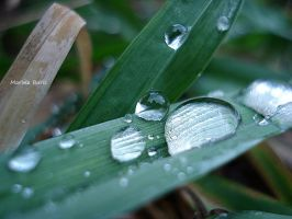 more drops of water by Lady-Deliah