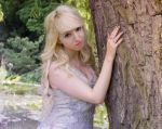 Faerie - Stock by Liancary-Stock