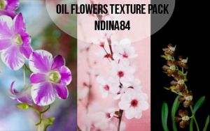 Oil flowers texture pack by ndina84