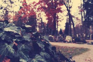 autumn cemetary by LurchiMone
