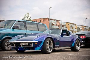 .s.t.i.n.g.r.a.y. by AmericanMuscle