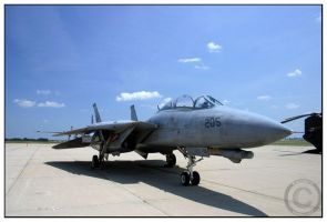 F-14D Tomcat VF-213 by opsidian