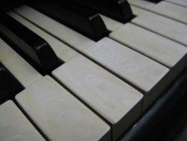 Stock Steinway Keys 11 by darlingstock