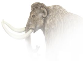 Woolly Mammoth by MiloOryx