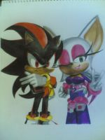Shadow and Rouge..4 a friend by Fatee21