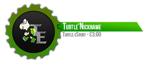 Youtube Video Overlay - Turtle eSport by CoresShowroom